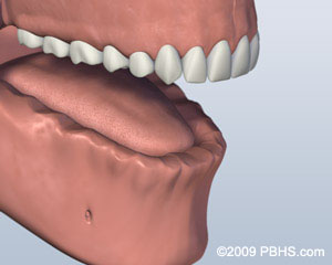 A mouth with the lower jaw missing all of its teeth