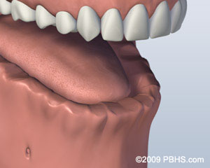 A mouth that has all teeth missing on its lower jaw